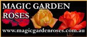 Magic Garden Roses