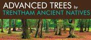 Trentham Ancient Natives - Advanced Trees