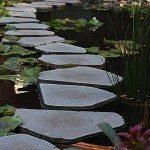 Backyard Ponds Waterfalls Streams