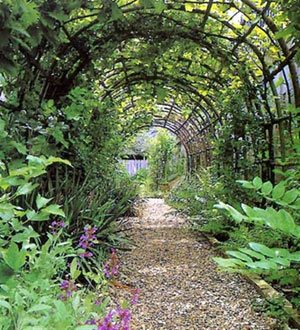 Garden Arches Nurseries Online