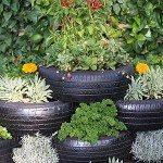 Design Herb Gardens