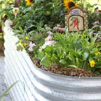 Galvanised Iron Raised Garden Bed