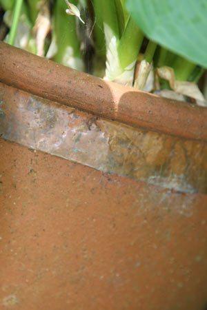 Copper Tape as a snail barrier.