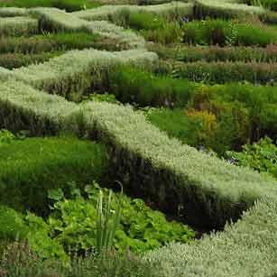 Informal Parterre Garden Design