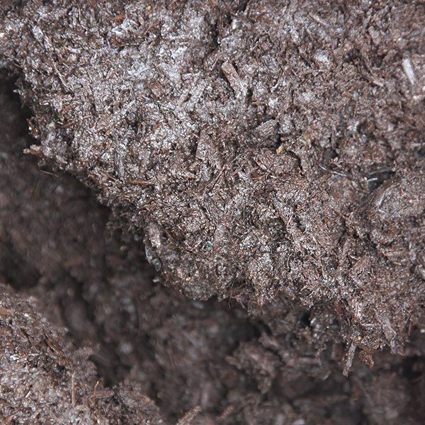 Mushroom compost nurseries online for Mushroom soil