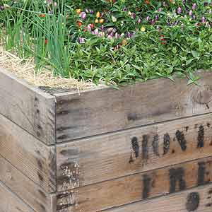 Timber Box Raised Garden