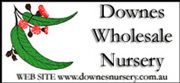 Downes Wholesale Nursery