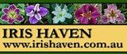 Iris Haven