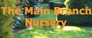 The Main Branch Nursery