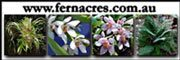 Fern Acres Nursery