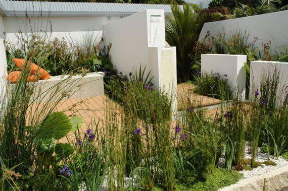 Design for a rain garden