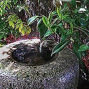 Japanese Garden Bowl