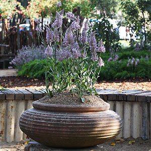 Garden Pots Melbourne Flower Show