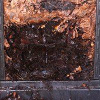Compost Bin results