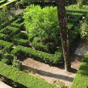 Parterre Garden Design