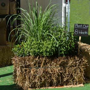 Straw Bale Gardening - Bale Grow