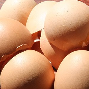Eggshells for adding calcium to the garden