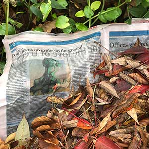 Sheet Mulching with Newspaper